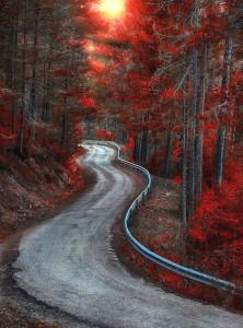 Cuenca autumn