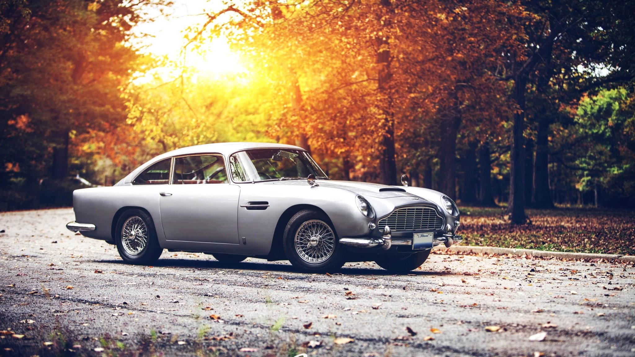 The-Best-Vintage-Car-Wallpapers-11-Best Vintage Car-wv-aston martin-ferarri