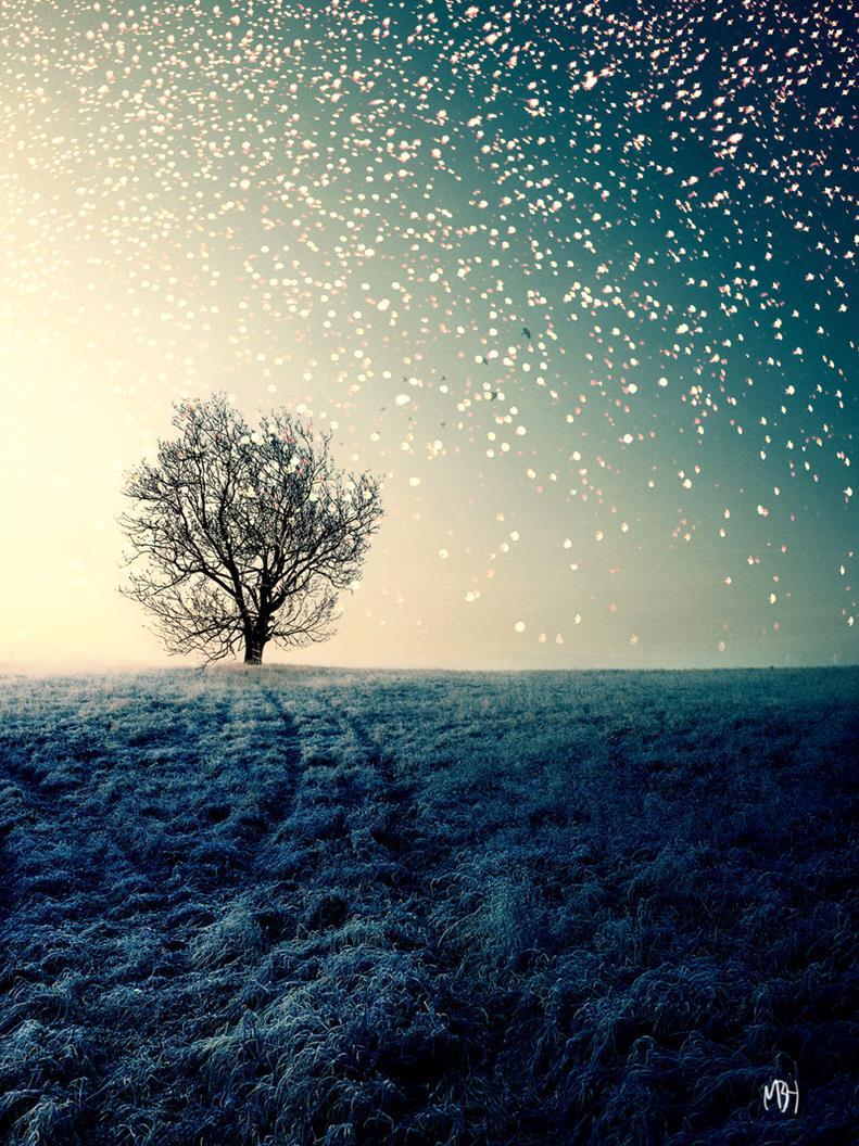 The-Nowhere-Tree-Stunning Photo-Manipulations