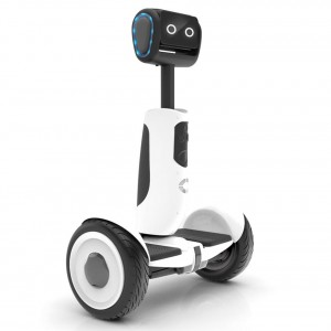 15-Your personal alive Segway-segway-transporter