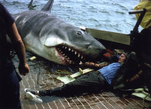 D-600-jaws-behind-the-scenes-photos-behind-the-scene-movie