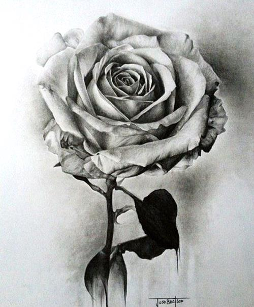 1a-Hyper-Realistic-Pencil-Drawings-art-draw