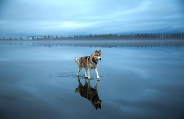 rozen-Lake_0-laws-of-physics