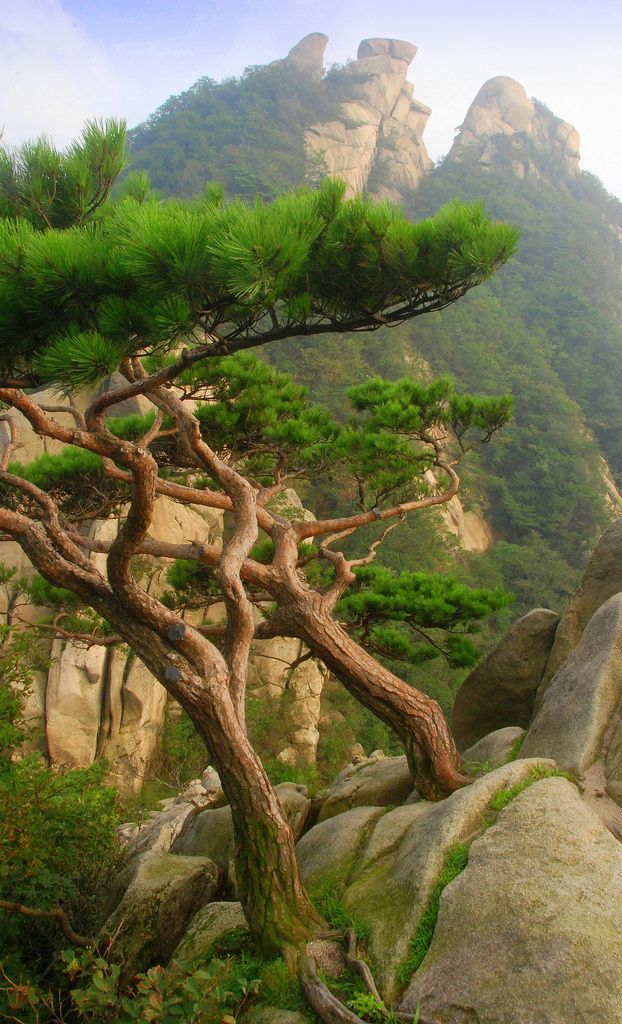 BUKHANSAN NATIONAL PARK, SOUTH KOREA