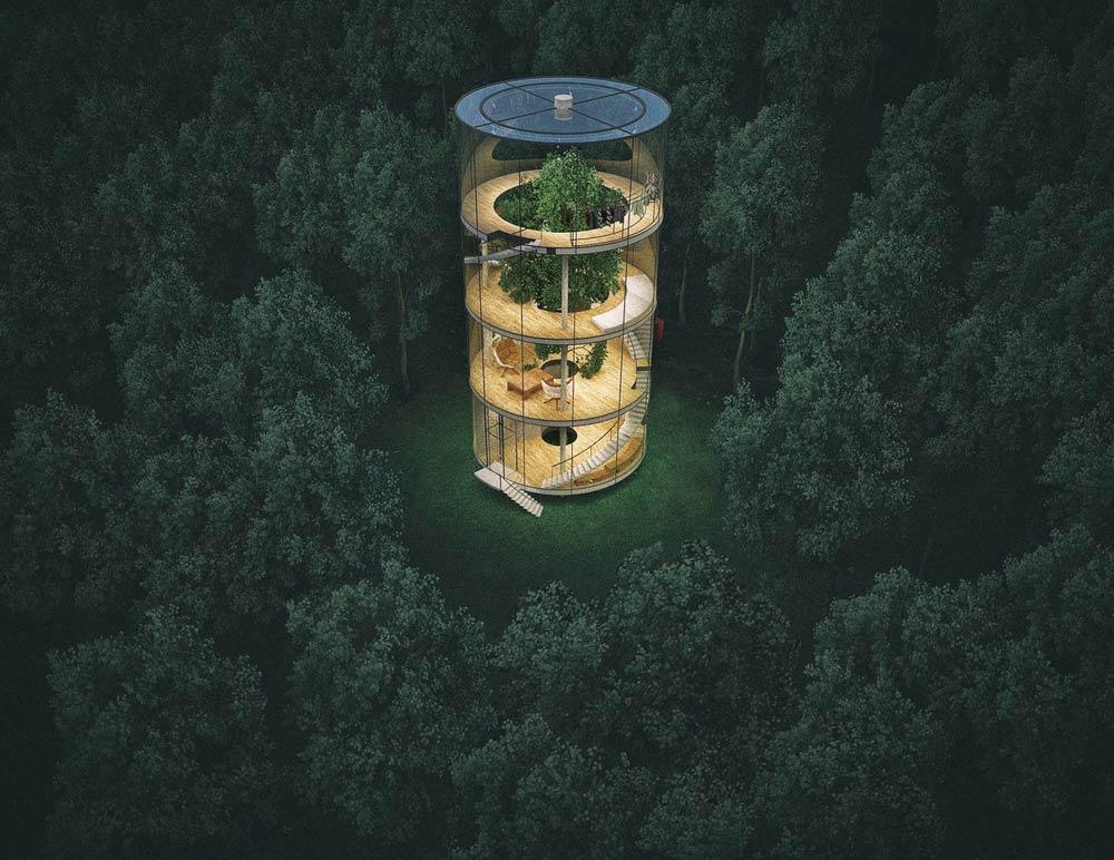 tubular-glass-house-built-around-tree-masow-architects-1