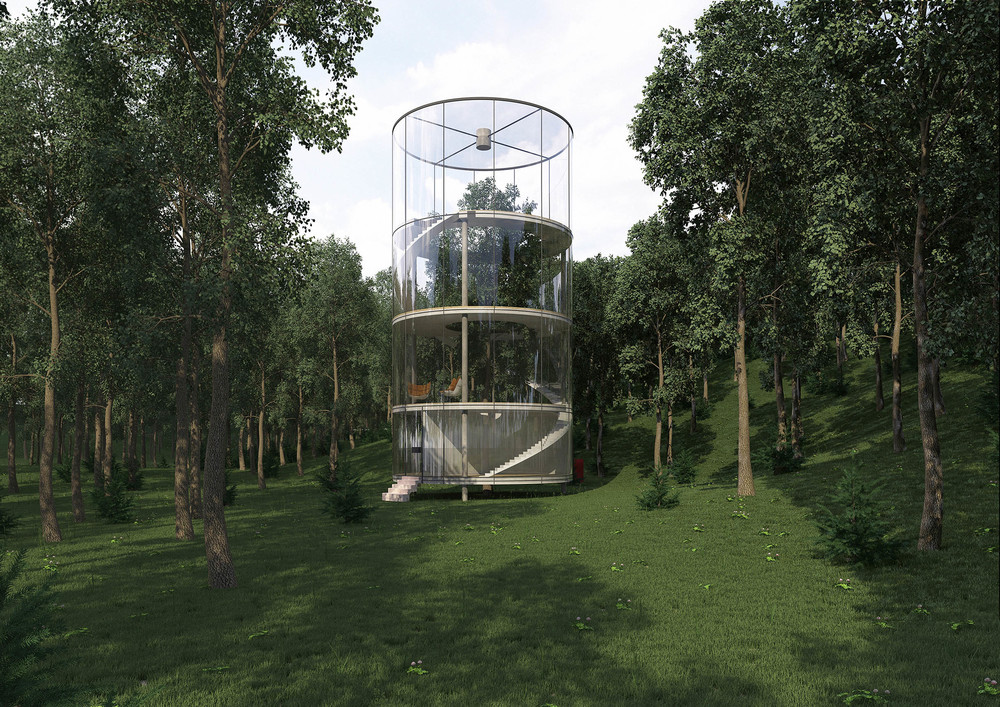 tubular-glass-house-built-around-tree-masow-architects-3