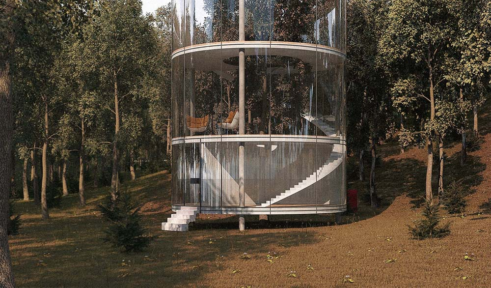 tubular-glass-house-built-around-tree-masow-architects-5