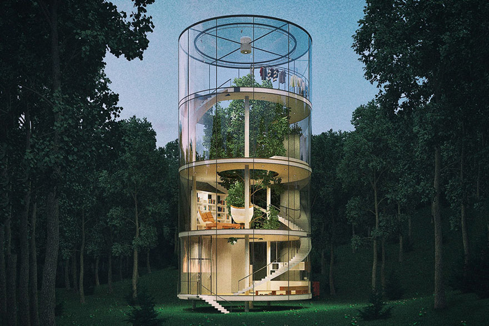 tubular-glass-house-built-around-tree-masow-architects