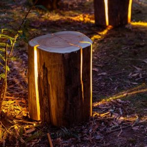 The lamp is made from an old stump