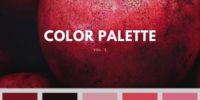 color palette –  inspiration (20 photos)