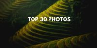Top 30 amazing photos for your inspiration